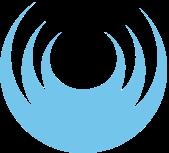 Dental Practices Services, Inc. Logo